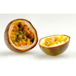 THJ Arôme Fruits de la Passion fruit Super Concentre