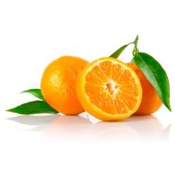 THJ Arôme Mandarine Super Concentre