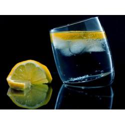 THJ Arôme Gin  Super Concentre