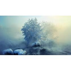 THJ Arôme Nabila Brouillard givrant  Super Concentre