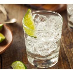 THJ Arôme Gourmet Gin