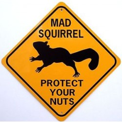 Concentré Mad Squirrel THJ