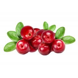 THJ Arôme Gourmet Cranberries Naturel